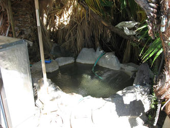Lee Lizards personal pool (Lower Saline)